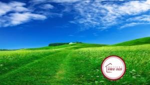 Terrain-à-vendre-022-300x171