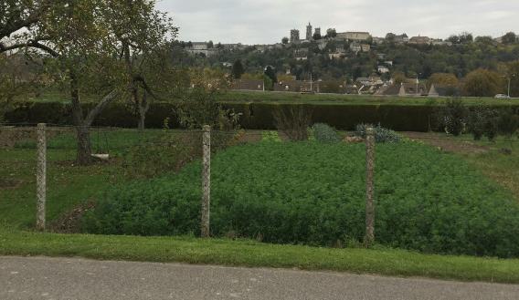 terrain Laon 3