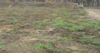 terrain bruyeres 2