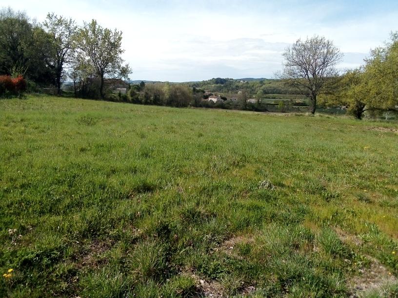 terrain mme brunel 1711m2